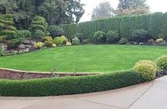 Landscaping Melbourne – Turning Your Landscaping Into A Home